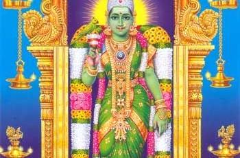 Pournami Abhishekam and Masi Maham Special Abhishekam